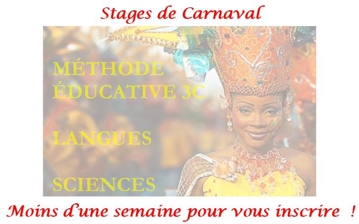 popup_carnaval_v2